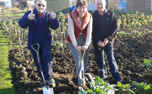 Get active on the allotment