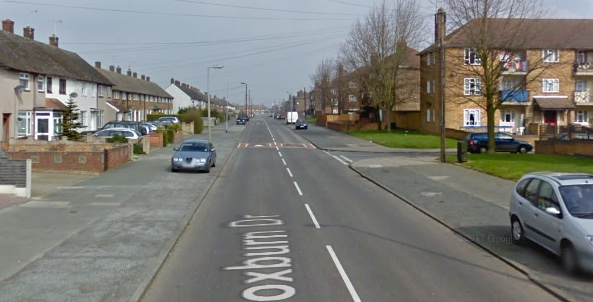 Dog dies after house fire in South Ockendon