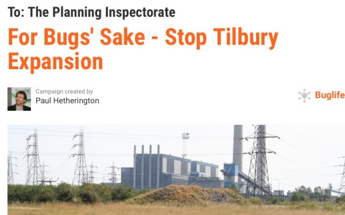 Buglife petition against Tilbury expansion tops 75,000