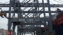 Trading Standards seize its most dangerous products at London Gateway port