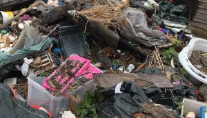 Fly Tip July 17