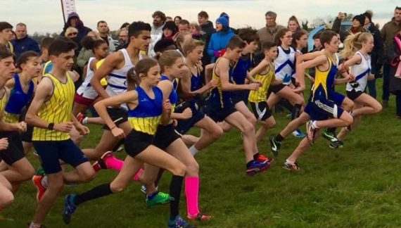 Athletics: High point for Finnlay in Writtle