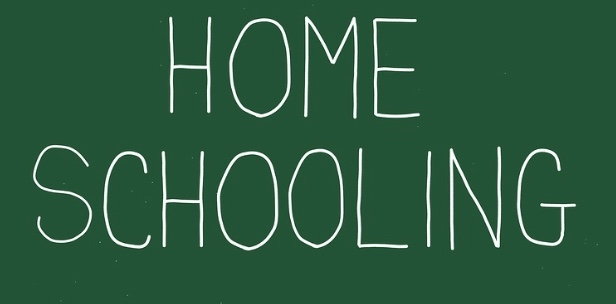 Massive increase in number of Thurrock children being home-schooled