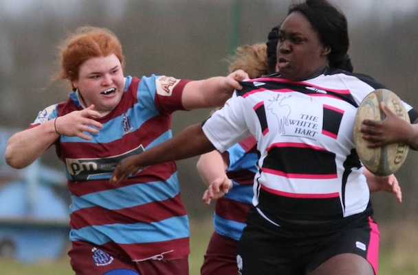Rugby: Thurrock T-Birds brush Hove aside