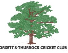 Cricket: Orsett and Thurrock suffer defeat after loss of early wickets