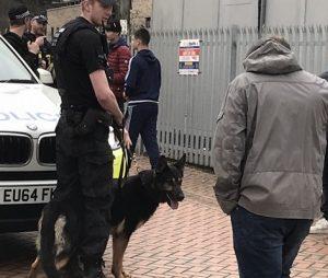 Police Grays 1