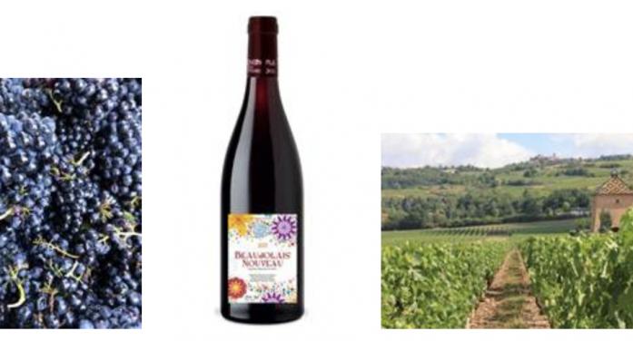 Morrisons in Grays brings back Beaujolais Nouveau