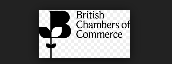 British Chamber of Commerce have twenty questions over Brexit