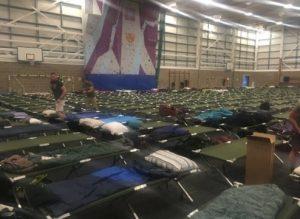 Trump Beds