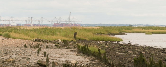 Estuary 2021 brings over 90 artworks and events to the 107-mile trail of the Thames Estuary