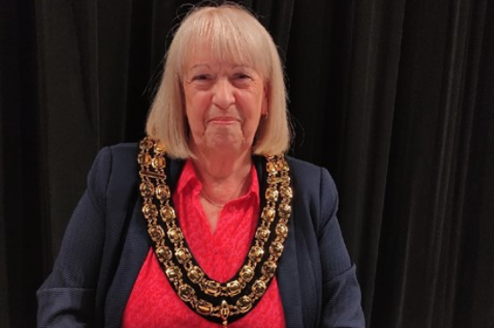 Mayor to recognise COVID-19 community stars