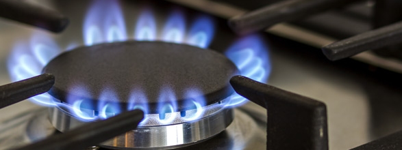 Gas price rise: Government considering loans for energy firms