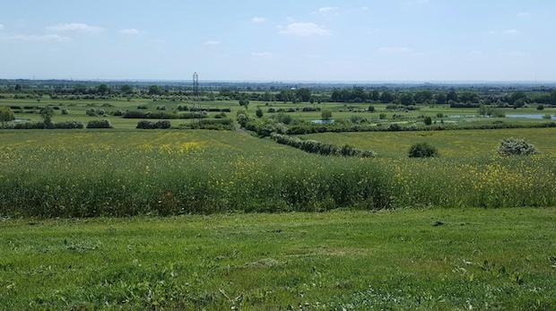 Over the Border: Councils clash over Dunton Garden Village project