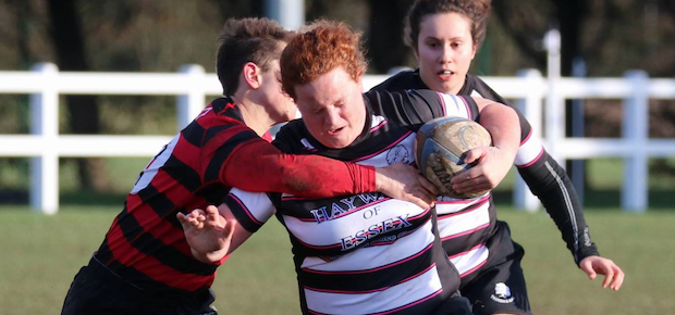 Rugby: T-Birds dig deep against Henley