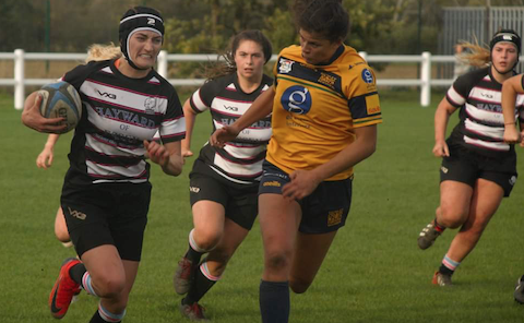 Rugby: Hard work for pays off for T-Birds