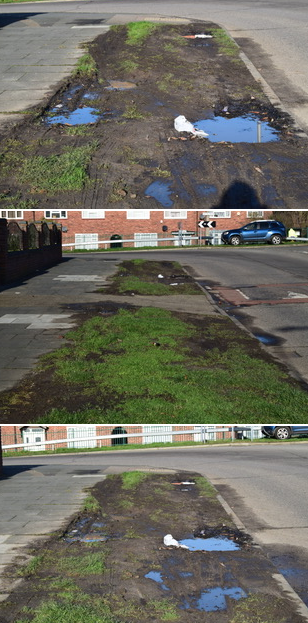 Mr. Perrin's Blog: Not happy with grass verges in South Ockendon