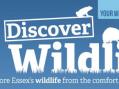 Essex Wildlife Trust brings Essex's wildlife straight to people's homes
