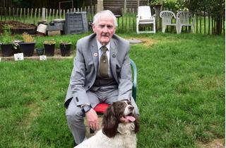 Mr Perrin's Blog: Farewell to my beautiful, beautiful dog