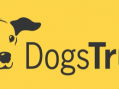 Dog Trust issues reassurance over coronavirus