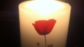 Light up a Life in memory of a loved one with St. Luke's Hospice