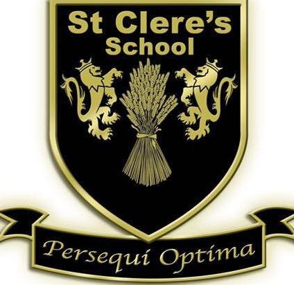 Boxing: St Clere's Finlay continue to impress