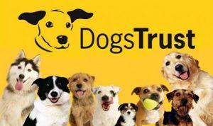 dogstrusts